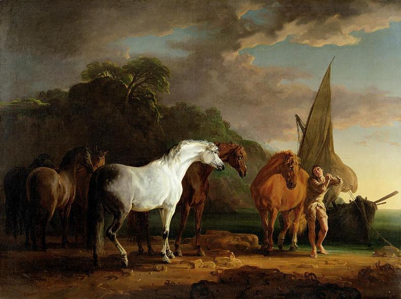 talkinghorses